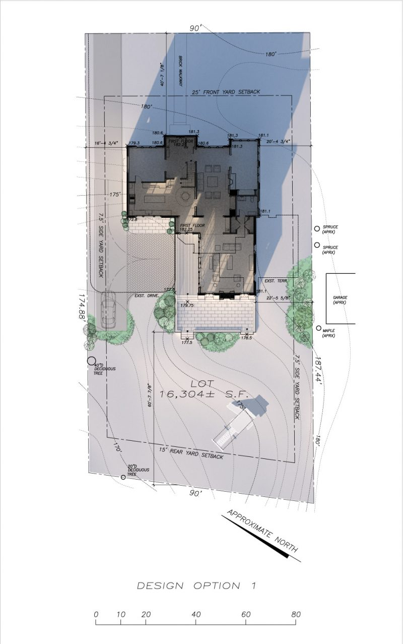 Rendered Site Plan and Sun Study